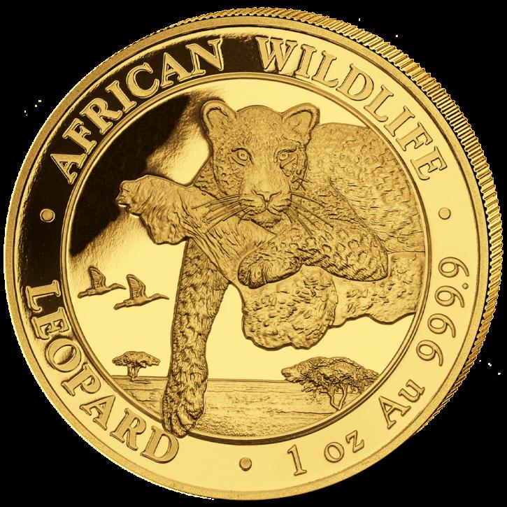 1 oz Gold Somalia Leopard 2020 - max 1000 - in Kapsel