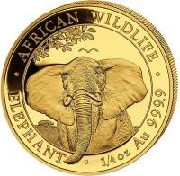 1/4 oz Gold Elefant Somalia 2021 in Kapsel