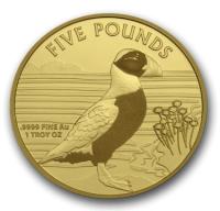 """1 oz Gold  Alderney  """" Puffin / Papageientaucher """" max. Mintage 100"""