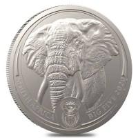 1 oz Platin Big Five BU Elefant / Elephant Südafrika 2020 ( diff.besteuert nach §25a UStG )