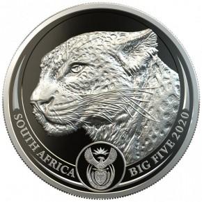 1 oz Platin Big Five Proof Leopard Südafrika in Box / COA ( diff.besteuert nach §25a UStG )