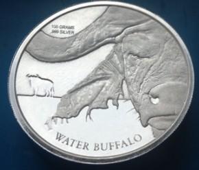 100 Gramm Silber Congo